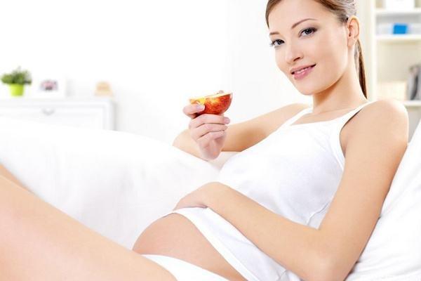 怀孕初期吃什么安胎好