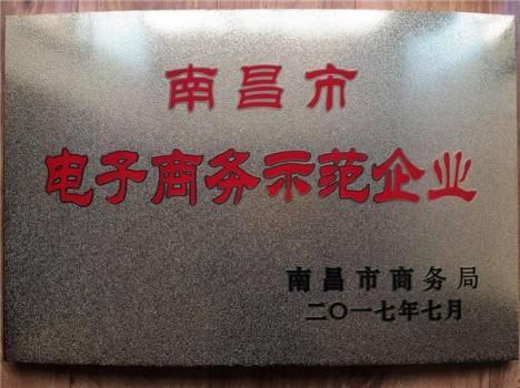 婧麒荣获江西省2017电子商务示范企业称号